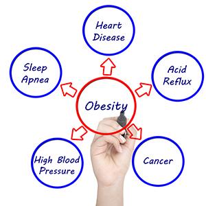 fat-loss-diet-plan