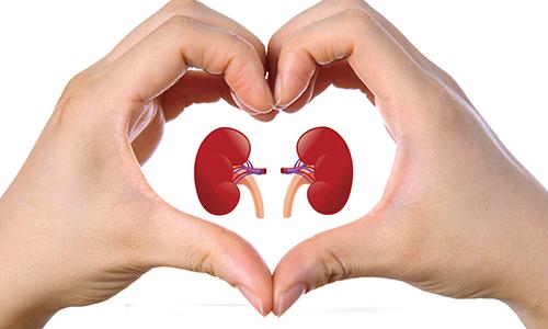 kidney-diet-plan2